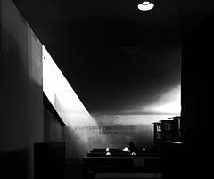 All Things In Nature Are Dark ~ Paris ~  MjYj