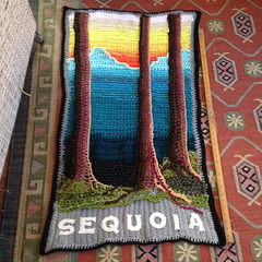 """Sequoia"", crocheted panel for Spring 2017 installation"