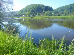 Friedlicher Sommermorgen - pacema somermateno