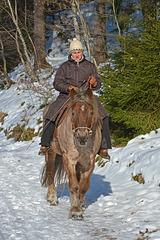 Mit dem Pferd durch den Winterwald