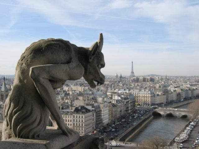 Reggiani : Les loups sont entrés dans Paris   EXPLORE
