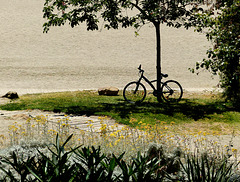 Vélo à la plage ....