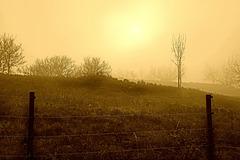 Endlich scheint die Sonne - Finally the sun is shining - HFF