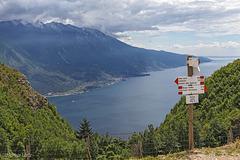 Bocca Larici 890 m