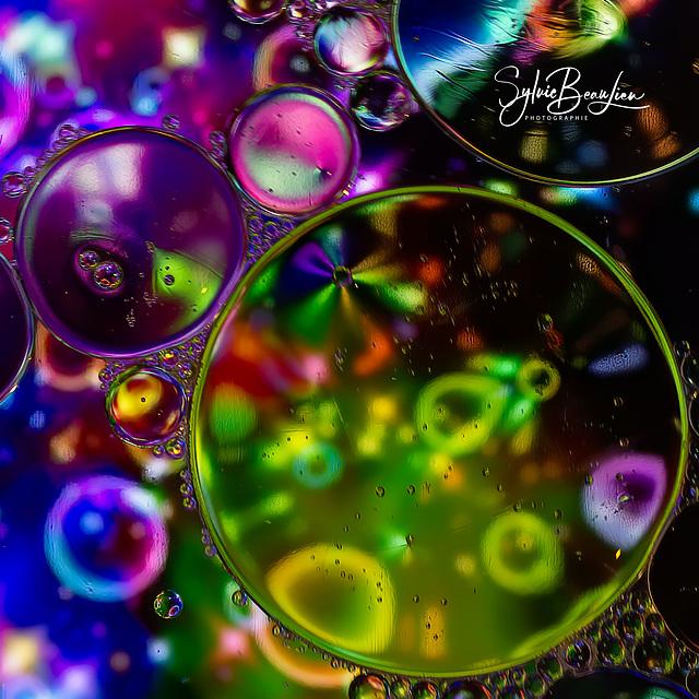 Bouillon de couleurs IMGP3498