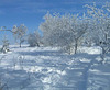 ...Winterwanderung...