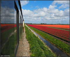 Steamtrain reflecting