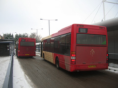 DSCN3766 Essex County Buses V119 LVH and V937 VUB in Bury St. Edmunds - 7 Jan 2010