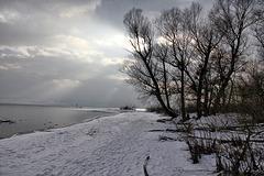 Argenmündung - Bodensee