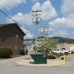 Dogwood-and-dumpster scene of a mountain town plus 3 utility poles with pole-mounted transformers and wooden siding.