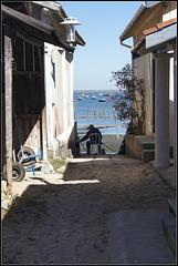 Canon village ostreicole