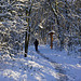 Schneewanderung - Hiking in the Snow