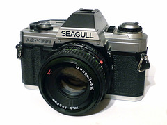 Seagull DF-300