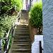 Salt Pan Well Steps