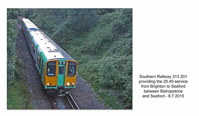 Southern Railway 313 201 - Claremont Road Bridge - Seaford - 8.7.2016