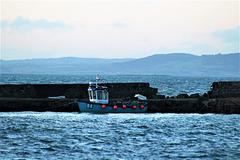 Strangford Lough N.Ireland