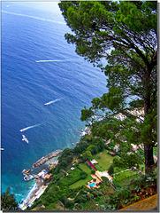 Capri : un tuffo in mare da 300 metri - (806)
