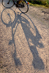 #40 Bicycle in Shadow...