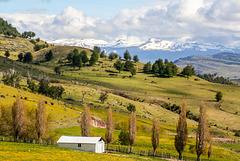 Patagonian spring