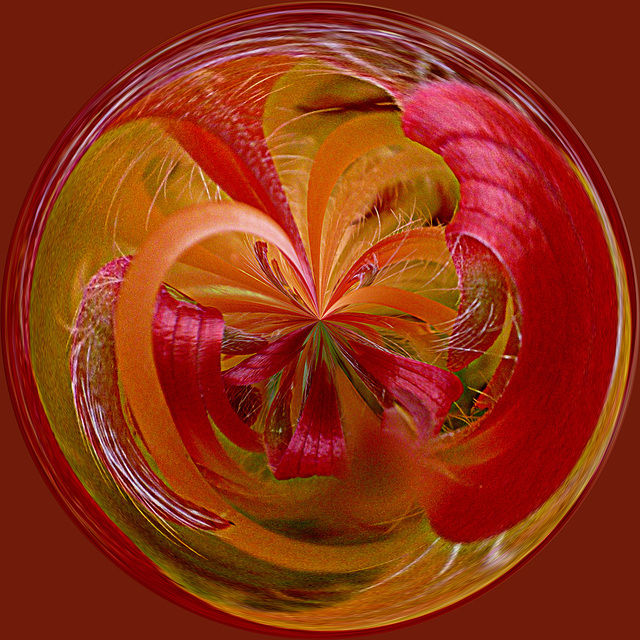 Capricho floral