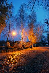 Вечер на сельской улочке/ Village street in the evening