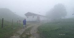 H F F  im Nebel und Regen