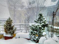 09-01-19, 13:00, Schneesturm... ©UdoSm