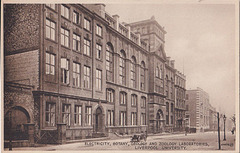 Liverpool University 08