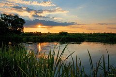 Літнє надвечір'я / Summer evening