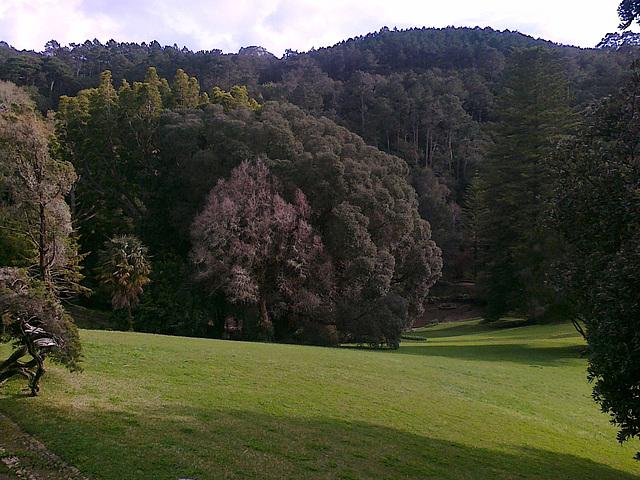 Jardim de Monserrate
