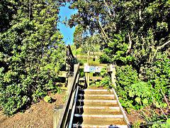 Steps .