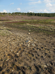 A picture of the official WILDERNESS VISITORS' ETHOS of take only pictures leave only footprints.