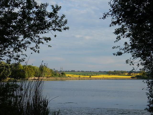 Am Dippelsdorfer Teich zu Moritzburg/Sa.