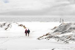 Walking the Beach - Strandspaziergang