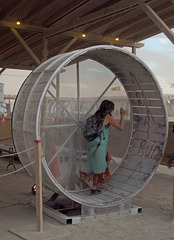 Hamster Wheel at The Man (2000)