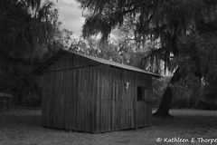 Circle B Bar Preserve Bunk House 022016