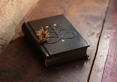 Brimstone journal