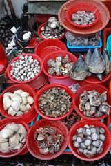 Meeresfrüchte -  Seafood