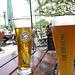 Biergarten am Rhein bei Speyer