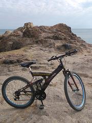 Vélo Shimano