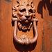a sad Lion