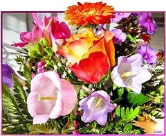 Summer flowers already in spring. ©UdoSm