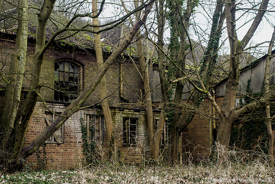 Abandoned to nature.