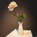 20140830 4640VRFw [D~LIP] Rose, Ziegeleimuseum, Lage