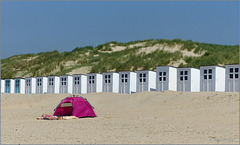 Pink at the beach on Texel...