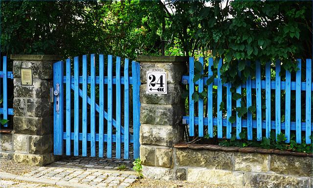 Blue Fence No. 24