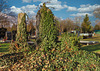 2(9)Friedhof graveyard churchyard...Austria vienna zentralfriedhof