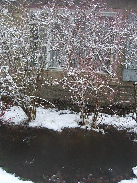 001 Winterimpressionen