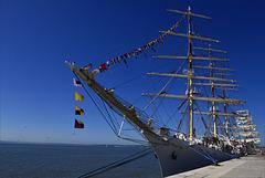 Lisboa, Tall ships race, cais e velas. Dar Młodzieży