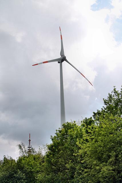Einer der Windräder auf der Halde Oberscholven (Gelsenkirchen-Scholven) / 5.05.2019
